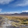 Deux éminents scientifiques explorent le nord de l'Argentine, étudient minutieusement processus et comportements, tentent de nouvelles expériences…et vous font partager leurs avancées spectaculaires! Toutes ressemblances avec une expérimentation d'ores et […]
